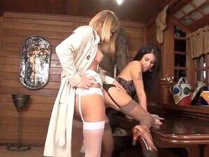 Mejor película transexual porno entera Peliculas Enteras Transexual Porno Teatroporno Com